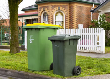 A green waste bin and rubbish bin on the naturestrip
