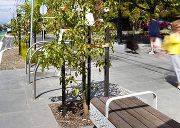 Street trees and bench on High Street, Northcote