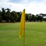 A flag on Bundoora Park Golf Course