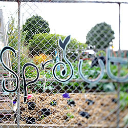 Sprout Community Gardens in Thornbury