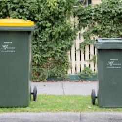 Two bins, Recycle and waste side by side